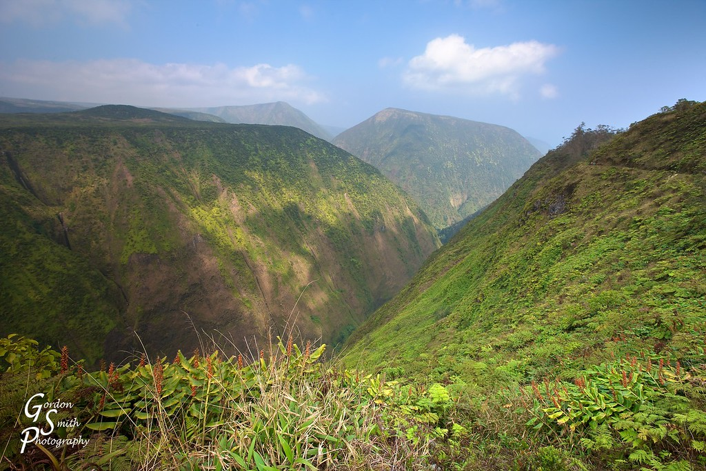 hamakua ditch trail to overlook