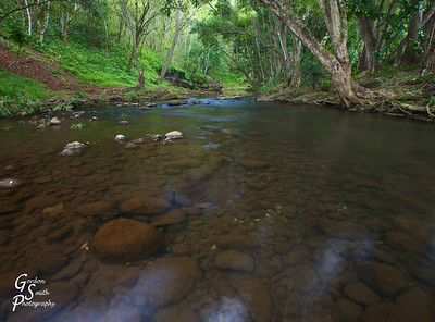 Kapa'a Stream