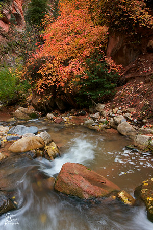 Autumn Leaves and Small Waterfall