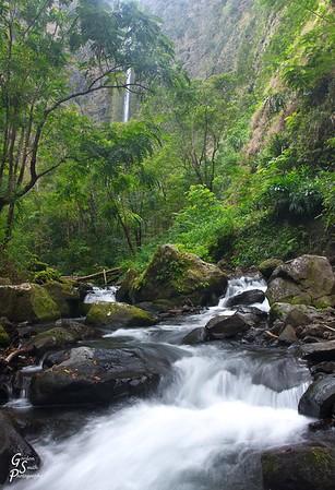 Waipio Valley:  hiking to the source of Hi'ilawe Waterfall