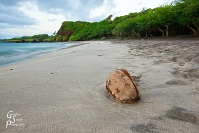 Coconut on Hamoa Beach
